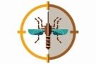 Malária: uma notícia boa — e outra ruim