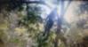 Suspeito de ter assassinado mãe e filho acaba de ser encontrado morto pendurado em uma árvore