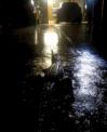 Crocodilos são vistos em ruas inundadas no nordeste da Austrália